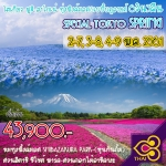 JGC SPETOKSPRING ทัวร์ ญี่ปุ่น SPECIAL TOKYO SPRING โตเกียว ฟูจิ ฮาโกเน่ ทุ่งพิงค์มอส & เบบี้บลูอายส์ 6 วัน 3 คืน บิน TG