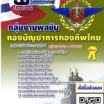 กลุ่มงานพลขับ (PDF)