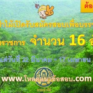 กรมป่าไม้ รับสมัครสอบแข่งขันเพื่อบรรจุและแต่งตั้งบุคคลเข้ารับราชการตำแหน่งนักวิชาการป่าไม้ปฏิบัติการ 16 อัตรา