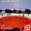 JGC LOVENEWYEAR_XJ ทัวร์ ญี่ปุ่น LOVE NEW YEAR โตเกียว ฟูจิ ฮาโกเน่ ชมไฟฤดูหนาว โอซาก้า ลานสกี 6 วัน 3 คืน บิน XJ thumbnail 1