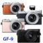 Panasonic Lumix DMC-GF9 (Free ) thumbnail 1
