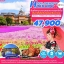 ZT HOK02 ทัวร์ ญี่ปุ่น ฮอกไกโด SPELL PINKMOSS IN HOKKAIDO 6 วัน 4 คืน บิน TG thumbnail 1