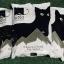 โมจิโต้ ทรายแมวภูเขาไฟถุงละ 5 กก. 1 แพค มี 4 ถุง thumbnail 4