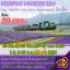 JGC HOKLAVENDER NO.1 ทัวร์ ญี่ปุ่น HOKKAIDO LAVENDER NO.1 บิเอะ โซอุนเคียว โทยะ โอตารุ ชมทุ่งลาเวนเดอร์ 5 วัน 3 คืน บิน TG thumbnail 1