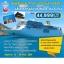 JH NRJH0513 ทัวร์ เส้นทางญี่ปุ่น เกาหลี กับเรือสำราญ โตเกียว โกเบ เชจู คาโกชิม่า 8 วัน 6 คืน บิน JL thumbnail 1