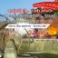 SSH SHMUKMG14 ทัวร์ คุณธรรม คุนหมิง…ลาบหมู ต้าหลี่ ลี่เจียง แชงกรีล่า 5 วัน 4 คืน บิน MU thumbnail 1