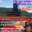JGC HOKSAKUPINKNO.2 ทัวร์ ญี่ปุ่น ซัปโปโร โอตารุ สวนสัตว์อาซาฮิยาม่า ชมซากุระ ชมทุ่งพิงค์มอส&ทิวลิป 6 วัน 4 คืน บิน TG thumbnail 1