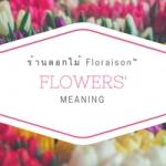 ความหมายของดอกไม้ | Floraison Flowers™