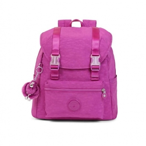 """Kipling Siggy Small Backpack Purple Garden กระเป๋าสะพายหลังขนาดกลาง ขนาด 13""""L x 13.5""""H x 6""""D"""