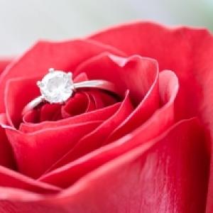 เลือกดอกไม้สำหรับจัดส่ง แต่ละโอกาสอย่างไร | Floraison Flowers™