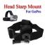 Head Starp Mount for GoPro Hero3+ 2 1 Accessories Camera สายยึดหัวหรือหมวกกันน็อคสำหรับกล้องโกโปร thumbnail 1