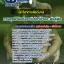 แนวข้อสอบนักวิชาการสัตว์บาล กรมอุทยานแห่งชาติ สัตว์ป่าและพันธุ์พืช NEW thumbnail 1