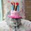หมวกวันเกิด มี2สี thumbnail 1