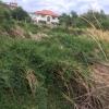 ขายที่ดิน ที่ดินถูก ย่านบางกระดี่ พระราม 2