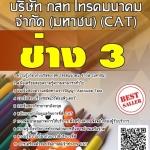 แนวข้อสอบ ช่าง 3 บริษัท กสท โทรคมนาคม จำกัด (มหาชน) (CAT)