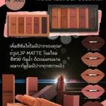 Sivanna mood recipe lip color kit hf 3002 ลิปสติก Sivanna เซต 5 แท่ง 5 สี แท่งใหญ่ 250 บาท