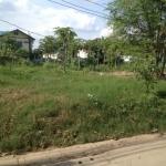 ขายที่ดิน ที่ดินเปล่า ทุ่งสองห้อง ใกล้สถานีตำรวจทุ่งสองห้อง เนื้อที่ 1ไร่ ราคาถูก