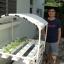 ชุดปลูกผักไฮโดรโปนิกส์ แบบตั้งโต๊ะ ขนาด 1 m 4 รางปลูก+2 รางอนุบาล thumbnail 4