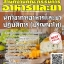 แนวข้อสอบ นักวิชาการอาหารและยาปฏิบัติการ (ปริญญาโท) สำนักงานคณะกรรมการอาหารและยา thumbnail 1