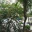ขายคอนโด เดอะคิทท์ แจ้งวัฒนะ THE KITH Cheangwattana อาคาร A พท. 28.94 ตร.วา 1นอน 1น้ำ เฟอร์ครบ พร้อมอยู่ ขายต่ำกว่าราคาตลาด thumbnail 13