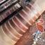 Sivanna Colors Luxury Velvet Eyeshadow HF697 eyeshadow 10 สีในตลับเดียว เนื้อครีม เม็ดสีแน่นละเอียดมาก 120 บาท thumbnail 3