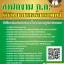 [อัพเดทล่าสุด]แนวข้อสอบ นักวิทยาศาสตร์การแพทย์ปฏิบัติการ สํานักงานคณะกรรมการข้าราชการกรุงเทพมหานคร (สํานักงาน ก.ก.) thumbnail 1