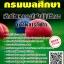 สรุปแนวข้อสอบ(พร้อมเฉลย) นักพัฒนาการกีฬาปฏิบัติการ (ด้านการกีฬา) กรมพลศึกษา thumbnail 1