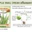 Fuji Snail Cream with Aloevera ฟูจิสเนลครีม ครีมบำรุงผิวหน้า สูตรหอยทาก ลดรอยแผลเป็น thumbnail 6