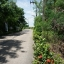 ขายที่ดิน ถนนบางนา-ตราด ตำบลบางสมัคร อำเภอบางปะกง จังหวัดฉะเชิงเทรา ขนาด 24 ไร่ 2 งาน 58 วา มีหมู่บ้านขนาดใหญ่ขนาบข้าง ใกล้เทศบาลตำบลบางสมัคร , ใกล้โครงการ TROPICANA thumbnail 12