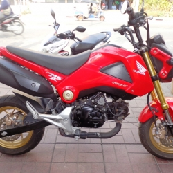 Rental Honda MSX 125cc Manual