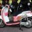 Rental Honda Scoopy 110cc Auto thumbnail 4