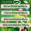 TrippleB Speed ทริปเปิลบี สปีด ใหม่!!!! thumbnail 2