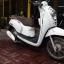 Rental Honda Scoopy 110cc Auto thumbnail 1