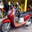 Rental Honda Scoopy 110cc Auto thumbnail 3